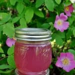 Wild Rose Jelly