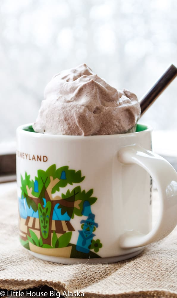 Cocoa in Mug Topped with Homemade Whipped Cream