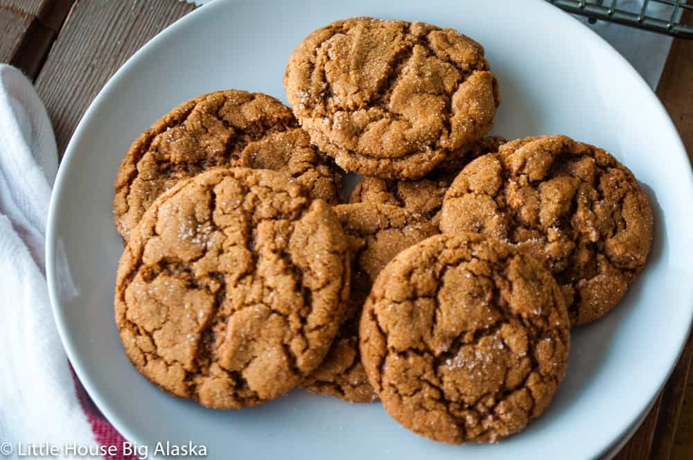 Plain Spicy Gingersnaps with ginger AND cayenne