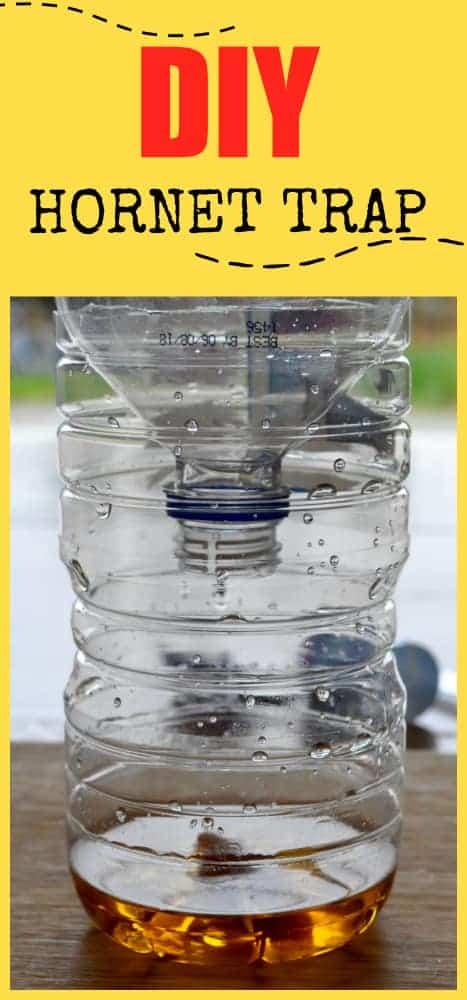 2 liter bottle - 2 9