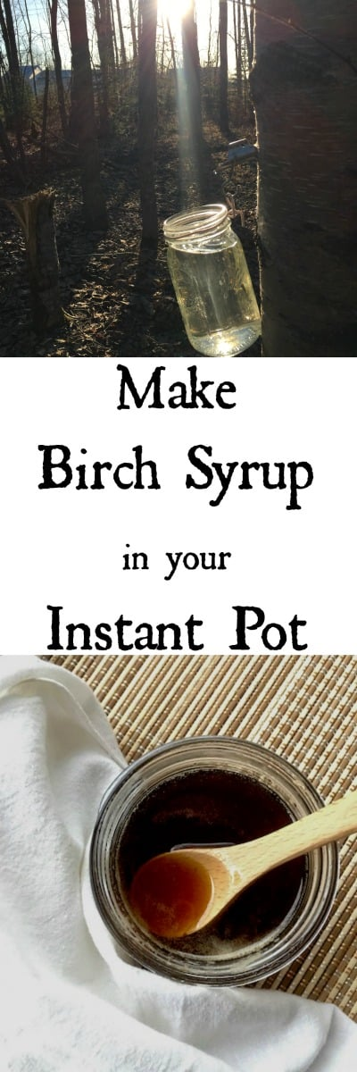 Make Birch Syrup in your Instant Pot
