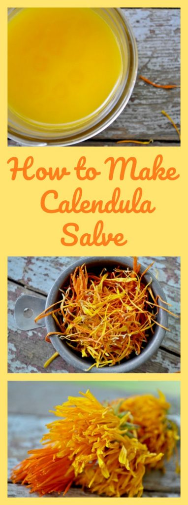 How to Make Calendula Salve