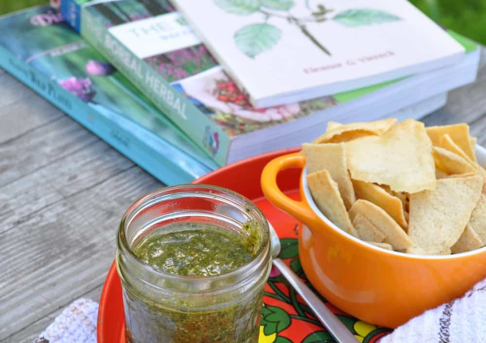 Dandelion Greens Pesto Recipe