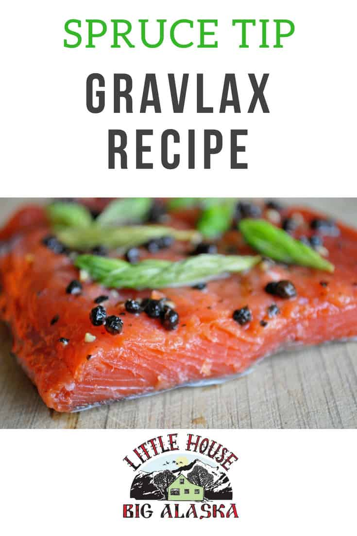 Spruce Tips Gravlax Recipe-2