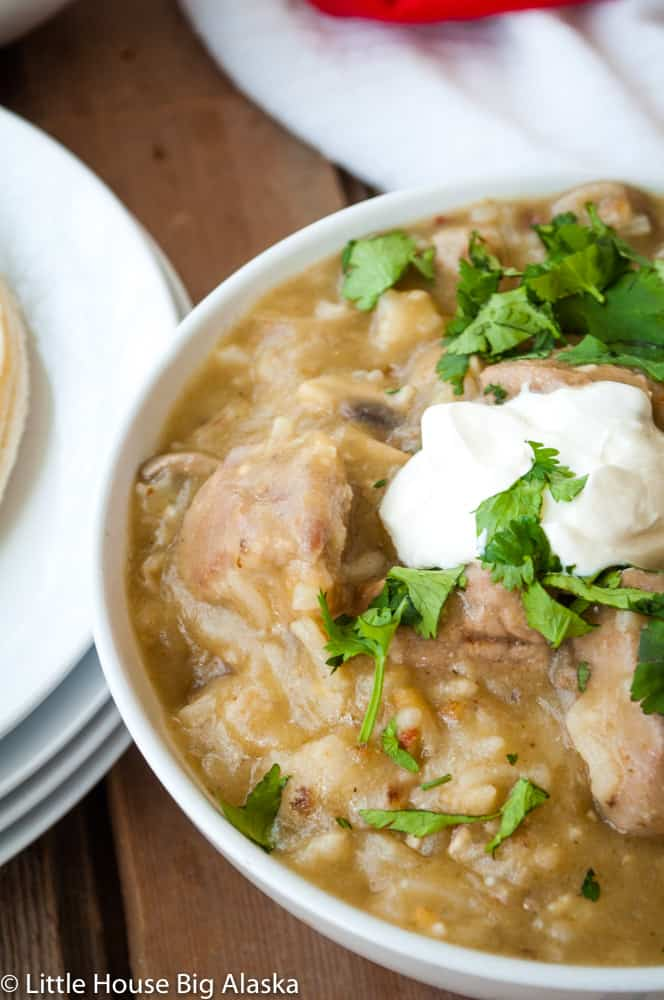 A nice piping hot bowl of Chile Verde can be yours in under 30 minutes