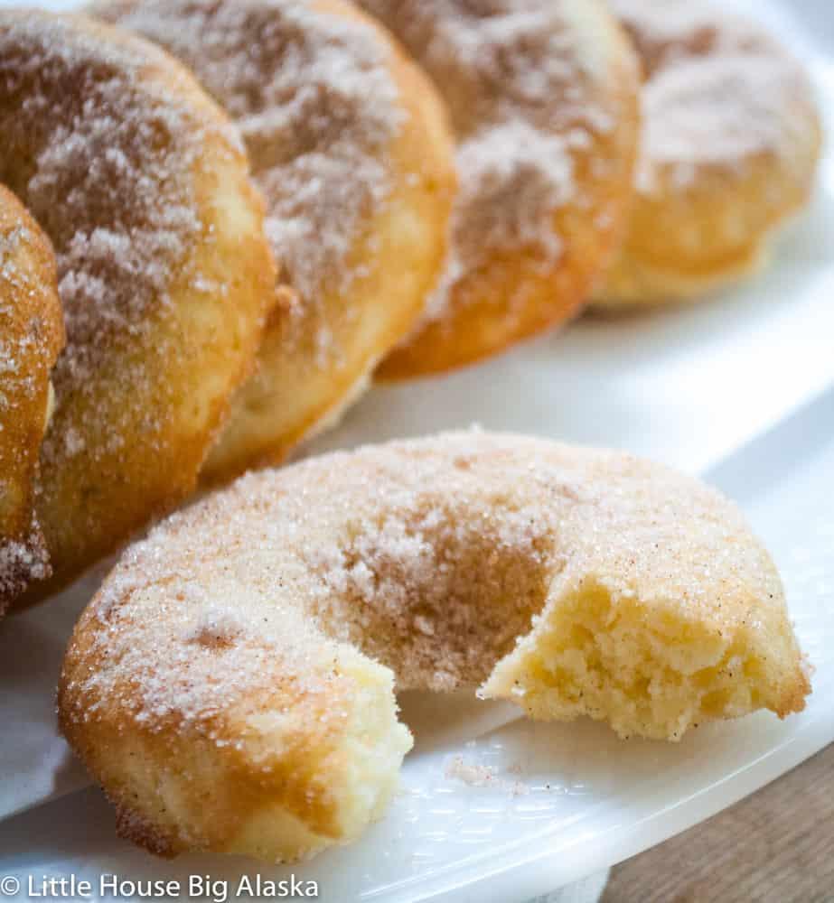 baked doughnuts full of apple