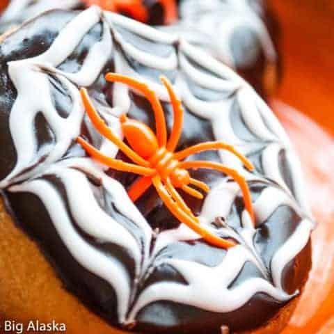 single Halloween Doughnut with icing edible spider web