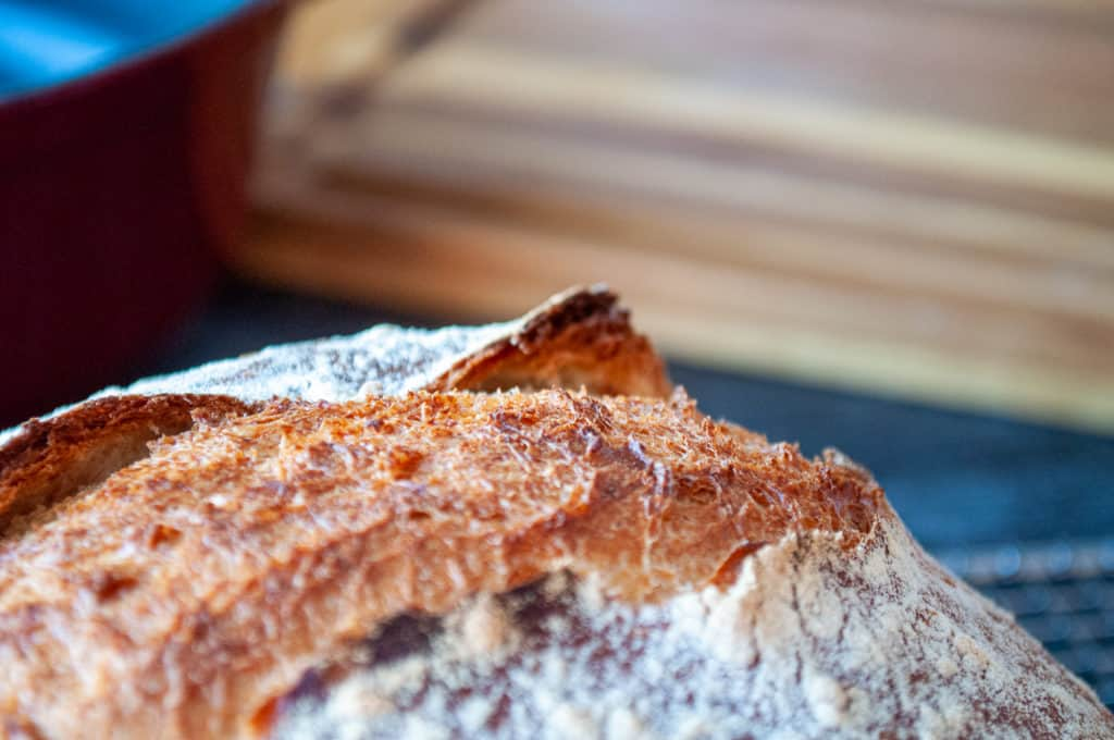 An ear on a NON-Sourdough loaf, how exquisite!